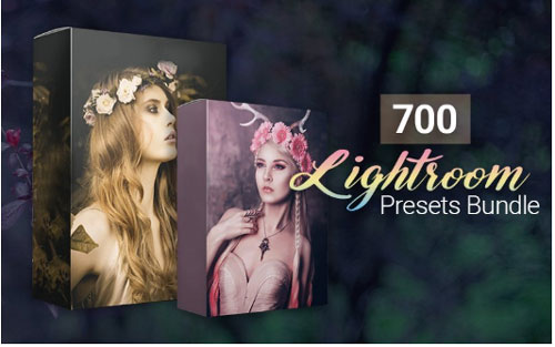 700-amazing-lightroom-presets-bundle-jpg.2312