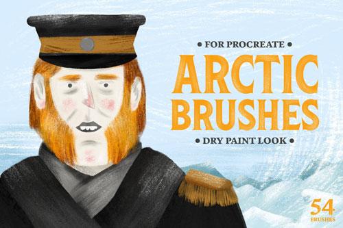 Arctic Dry Brushes.jpg