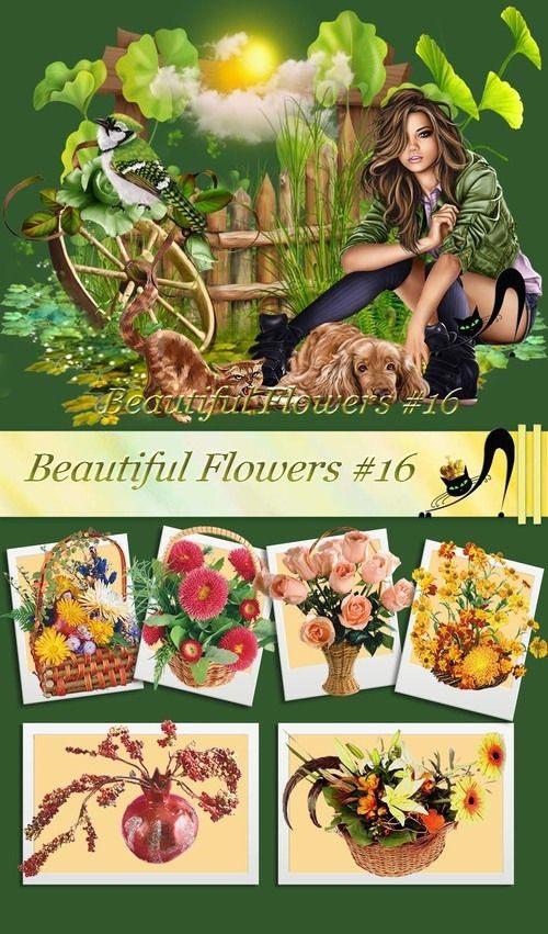 beautiful-flowers-16-jpg.700