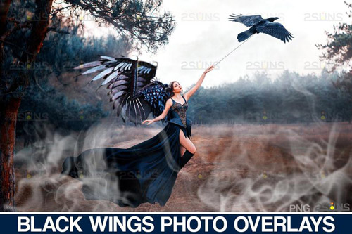 Black Wings Photo Overlays.jpg