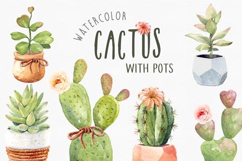 cactus-watercolor-jpg.2160