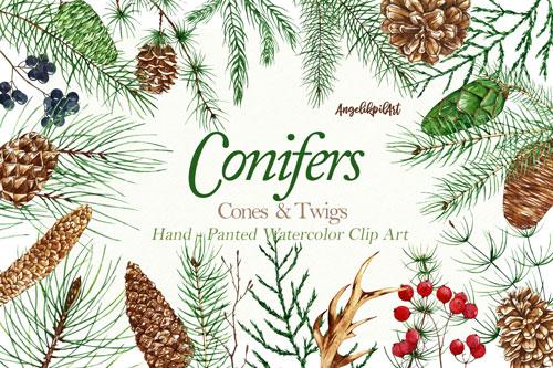 conifers-jpg.2188