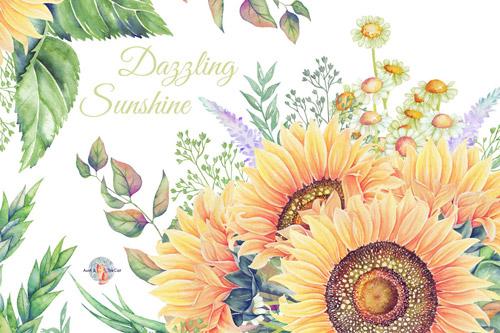 Dazzling-Sunshine.jpg