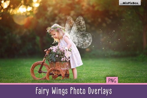 fairy-wings-overlays-jpg.1997