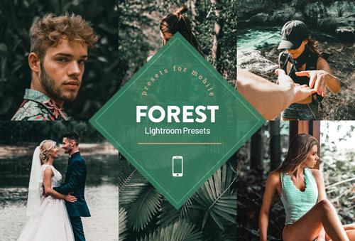 forest-jpg.5470