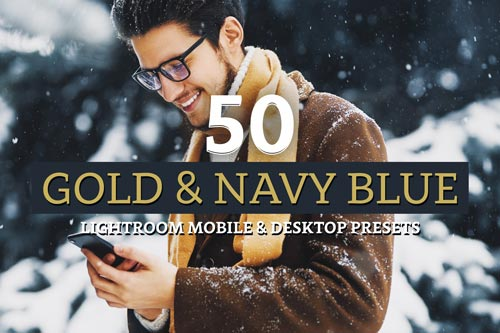 Gold-and-Navy.jpg