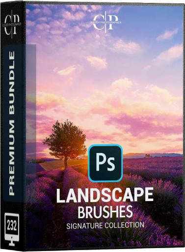 Landscape Brushes-main.png