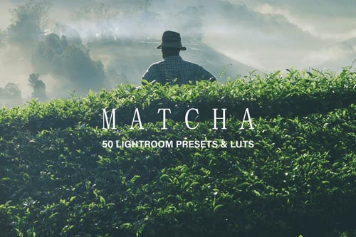 Matcha.jpg