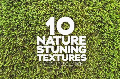 nature-stuning-textures-jpg.1768