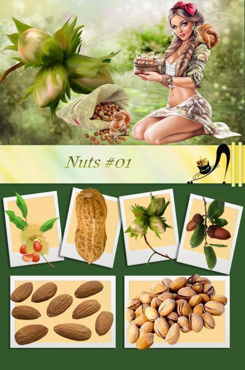 Nuts #01.jpg