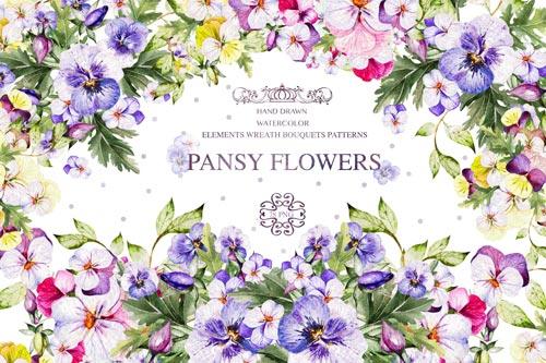 Pansy Flowers.jpg