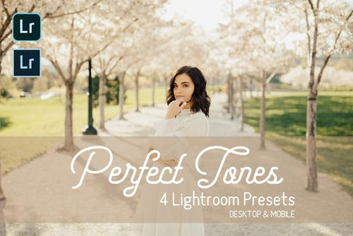 perfect-tones-lightroom-presets-jpg.1258