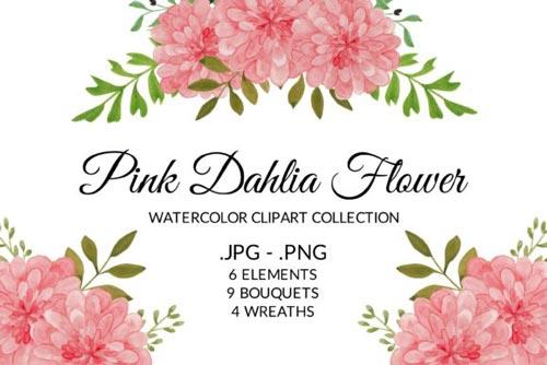 pink-dahlia-jpg.5163