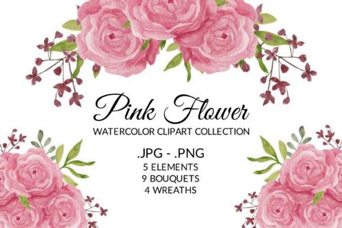 pink-rose-jpg.4952