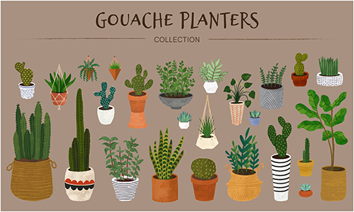 Planters Collection.jpg