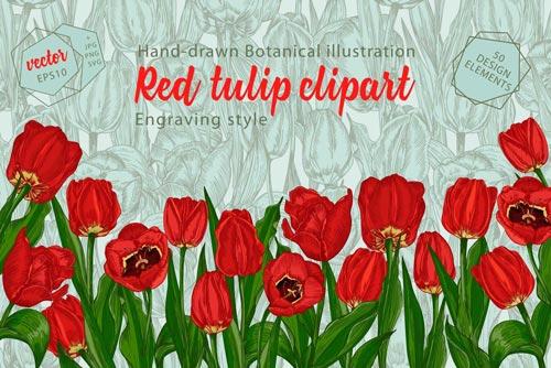 red-tulips-jpg.4903