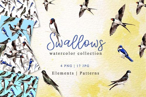 Swallows-Watercolor.jpg