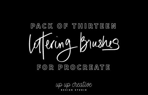 thirteen-brushes-jpg.6069