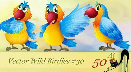 vector-wild-birdies-jpg.2514