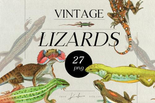 Vintage Lizards.jpg