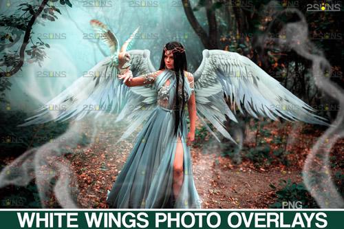 White Wings Photo Overlays.jpg