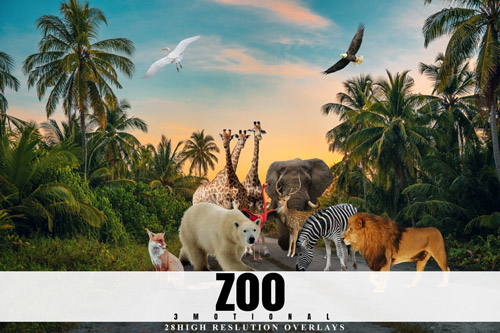 Zoo Overlays.jpg